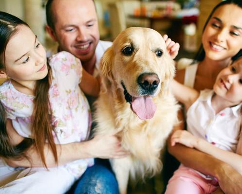 Familie erfreut sich am tierpsychologisch und Bachblüten betreuten Hund