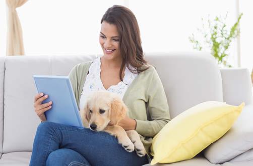 Über Bachblüten Fernstudium für Hunde Tierpsychologie studieren